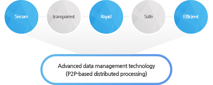 Advanced data management technology